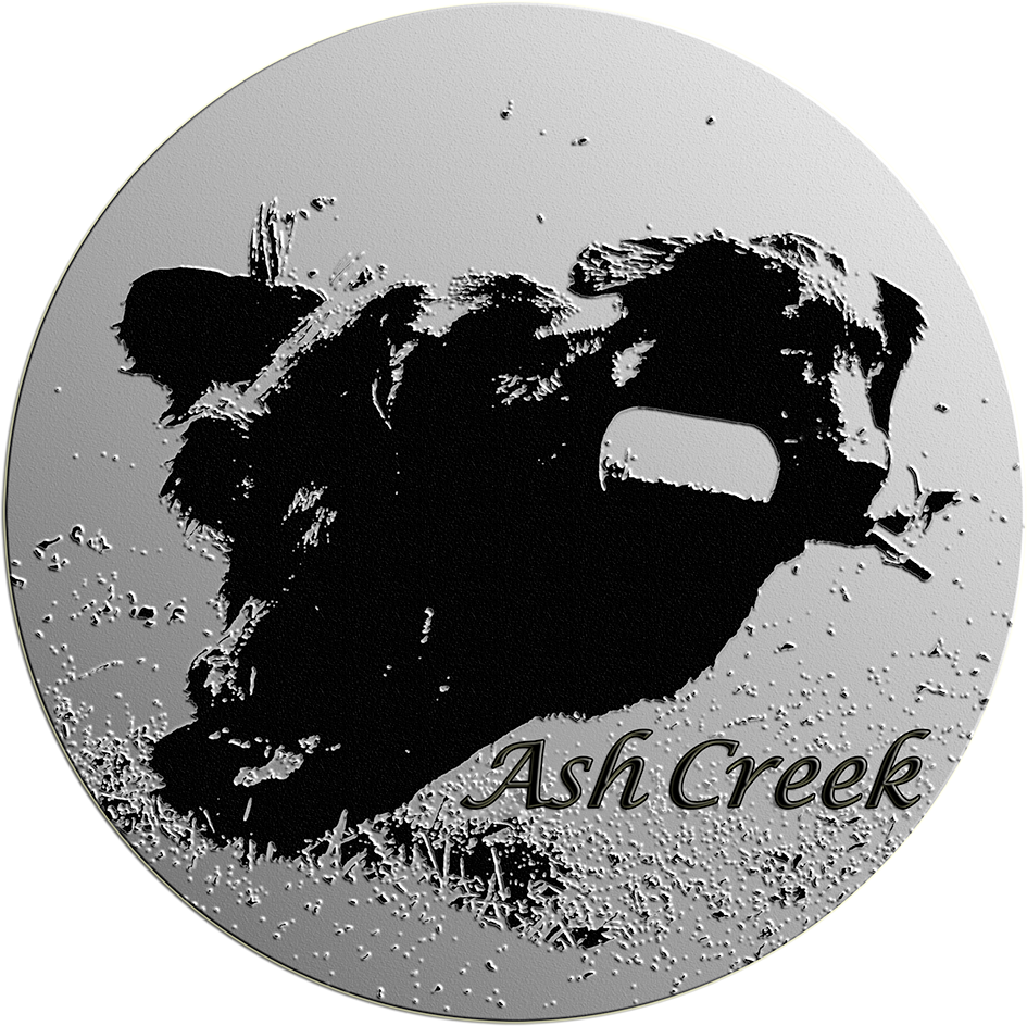 Ash Creek Flat Coated Retriever